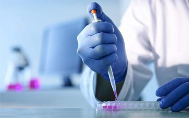 EU revises CLP regulations to lower the concentration limits of certain boron compounds